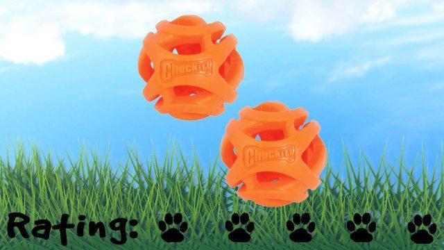 Chuckit! Breathe Right Fetch Ball. Five paws! \ Image: Petmate.com
