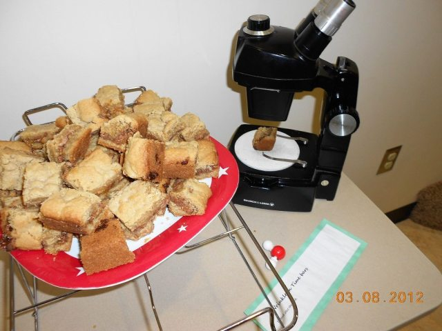 A plate of caramel cookie bars, one poised on the tray of a stereo microscope