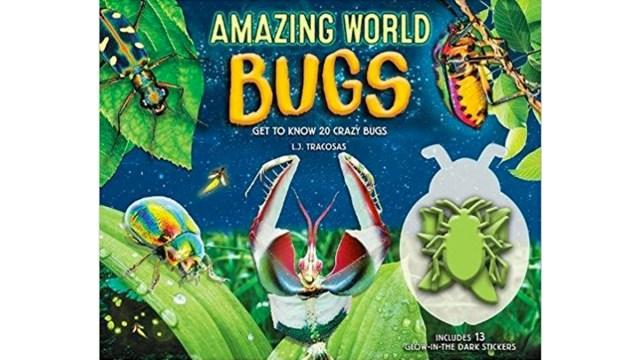 Amazing World: Bugs \ Image: Quarto Group