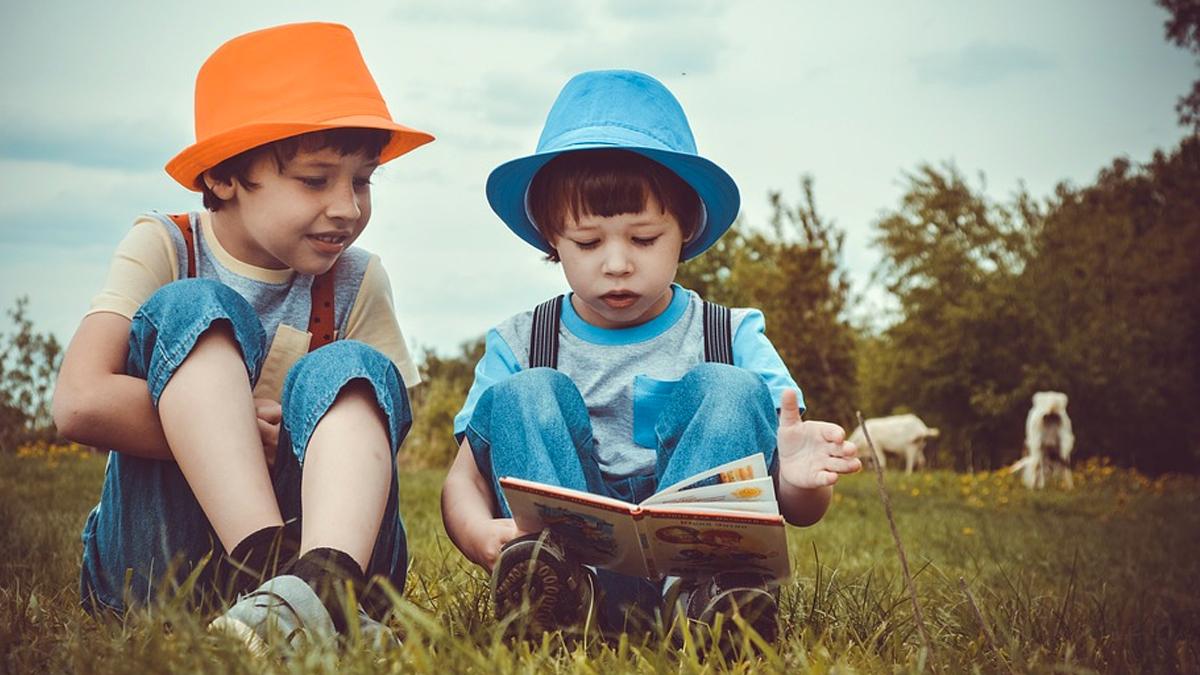 Summer Reading \ Image: Pixabay