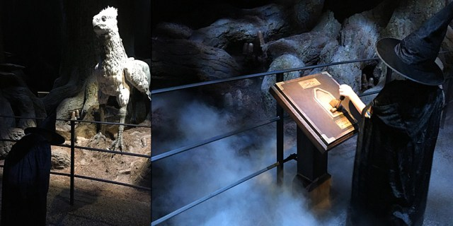 Bowing to Buckbeak and Controlling Special Effects in The Forbidden Forest, Images: Sophie Brown