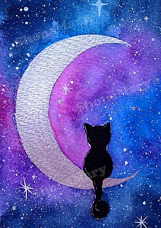 Cat Print by Shona Mary Designs, Image: Shona Mary Designs