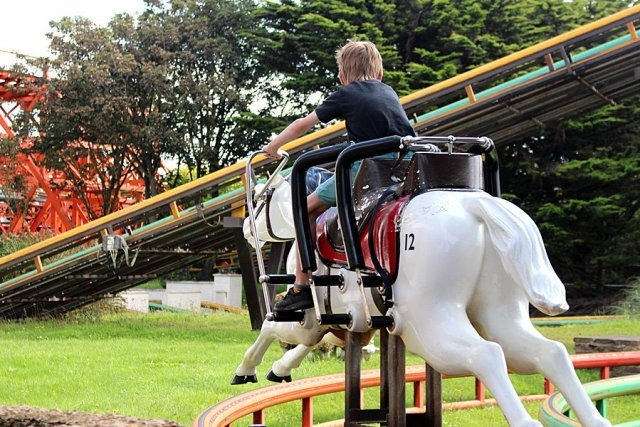 My Son Sets off on Steeplechase, Image: Sophie Brown