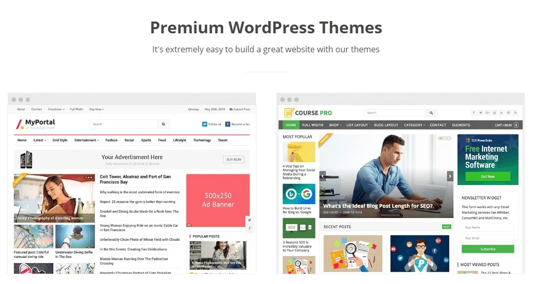 Perfect Wordpress Theme for Your Blog