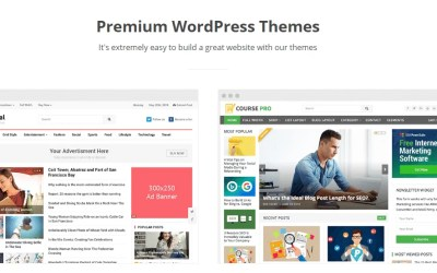 10 Tips for Choosing A Perfect WordPress Theme for Your Blog