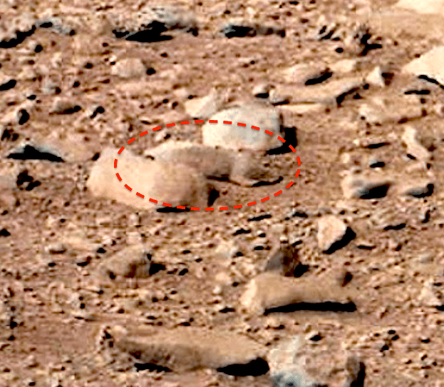 Mars Rover Discovers Squirrel on Mars