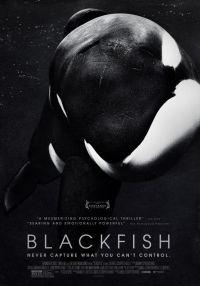 blackfish-01
