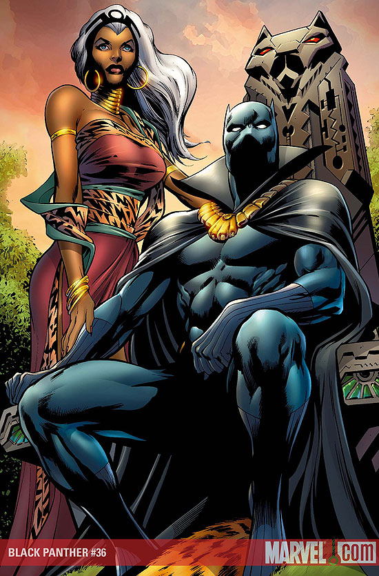 1119724-black_panther_and_storm