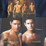 The Twilight Saga New Moon Trading Cards