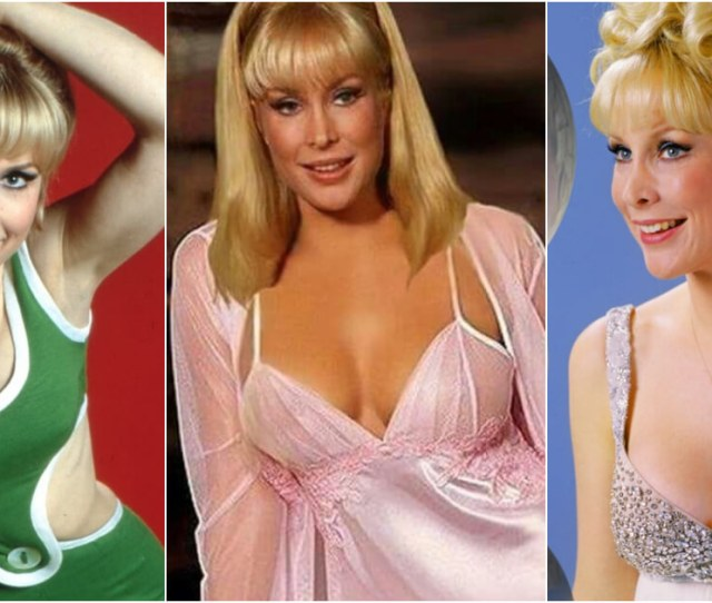 Sexy Pictures Of Barbara Eden Are Simply Excessively Damn Hot