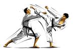 Fascinating martial arts