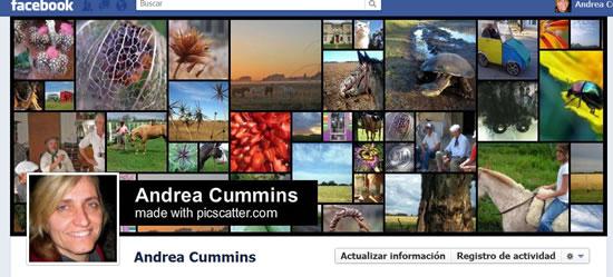 Personalizar tu portada de facebook con Pic Scatter