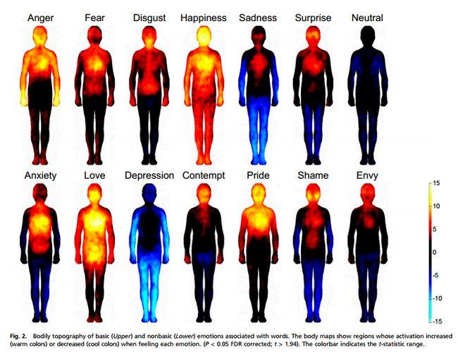 Estudio muestra en que partes del cuerpo humano impactan las ...