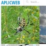Aplicweb es un sitio que ofrece docenas de imágenes de dominio público de alta calidad #Fotografía