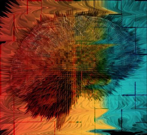 Foto: Human Brain Project en Facebook