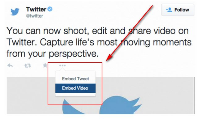widget-video-embed-twitter