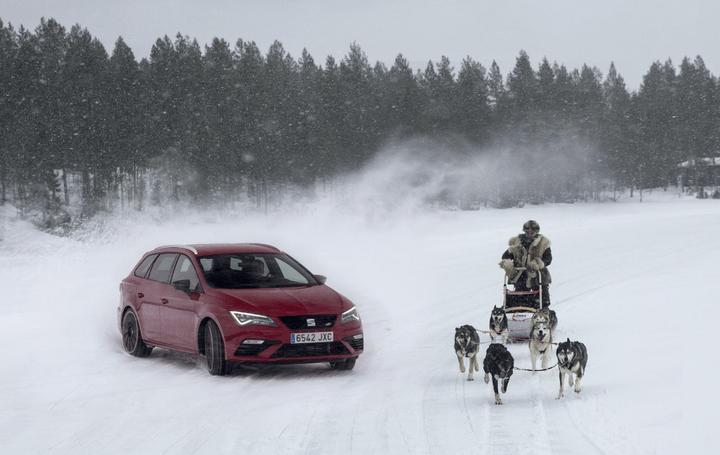 6 Huskies se miden contra el SEAT León CUPRA en un lago congelado de Finlandia [Vídeo]