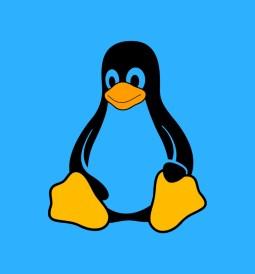 Gobierno de Corea comenzará a probar Linux para reemplazar a Windows 2