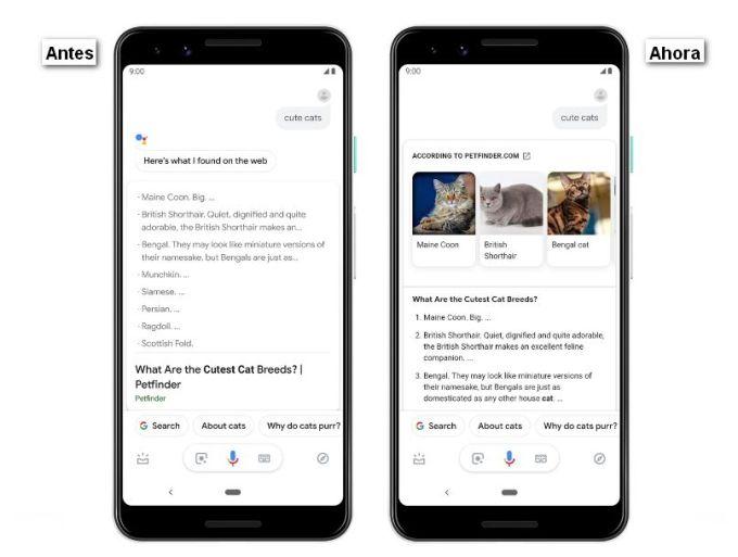 Asistente de Google - Respuestas Visuales