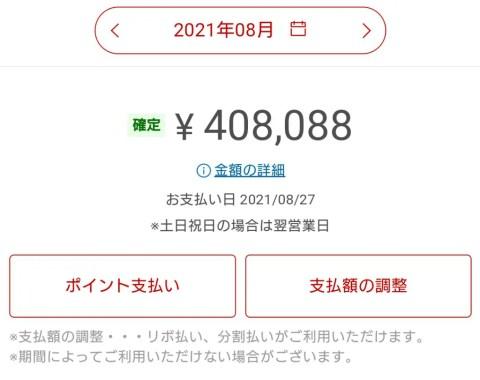 BLYWYsE-480x380 【クレカ】楽天カードから一括返済しろと言われたんだが?!