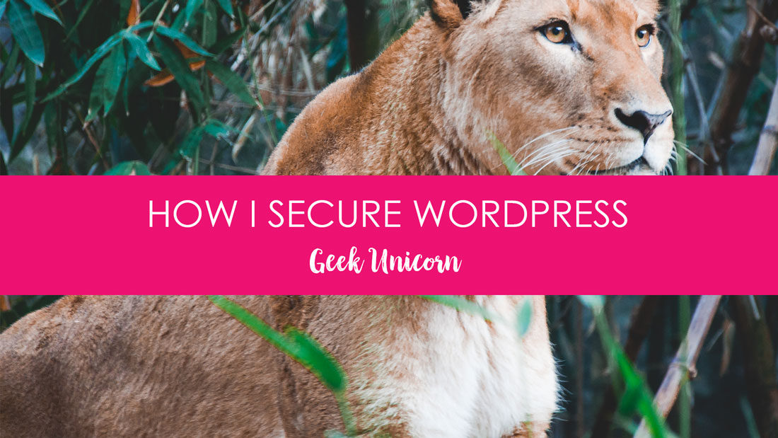 How I Secure My Wordpress Website Banner