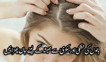 بالوں کی خشکی اور سکڑی سے ہمیشہ کے لیئے جان چھڑائیں