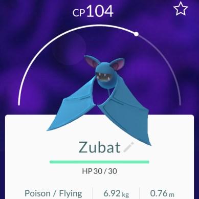 Zubat - Pokémon Go