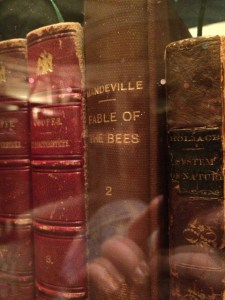 Fable of Bees was one title we spotted. Not only are the topics diverse, but also the language in which they were written!