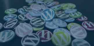 WordPress theme customization services