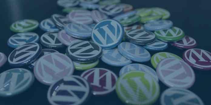 WordPress theme customization services