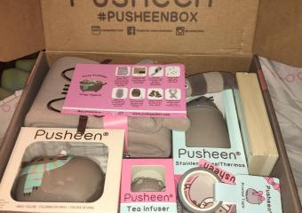 Winter 2016 Pusheen Box