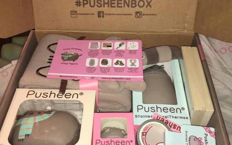 Winter 2016 Pusheen Box