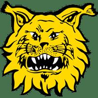 Ilves-Hockey Oy:lle ennätystulos ja -liikevaihto