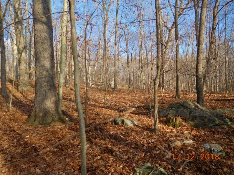 30-60 Red Hill Road, Branford, Connecticut 06405, ,Land,For Sale,Red Hill Road,1037