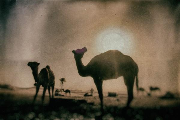 maroc 2014, maroc sel websitejj
