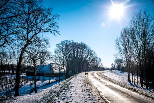neerijnen, opijnen, sneeuw, winter