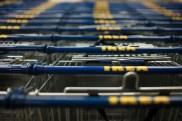 Ikea shopping carts