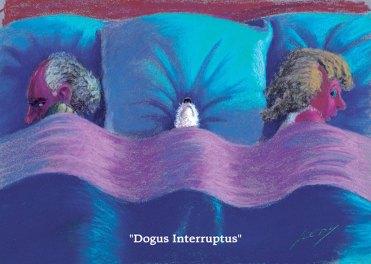 Dogus Interruptus