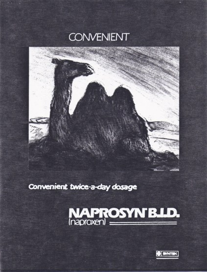 Comvenient Camel