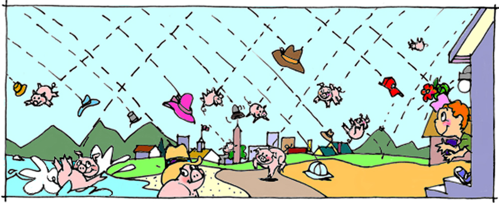 Raining Hats & Hogs