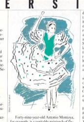 Schumaker 1987 Diversions Flameco