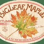 BigLeaf-Maple-Autumn-Red-label-500