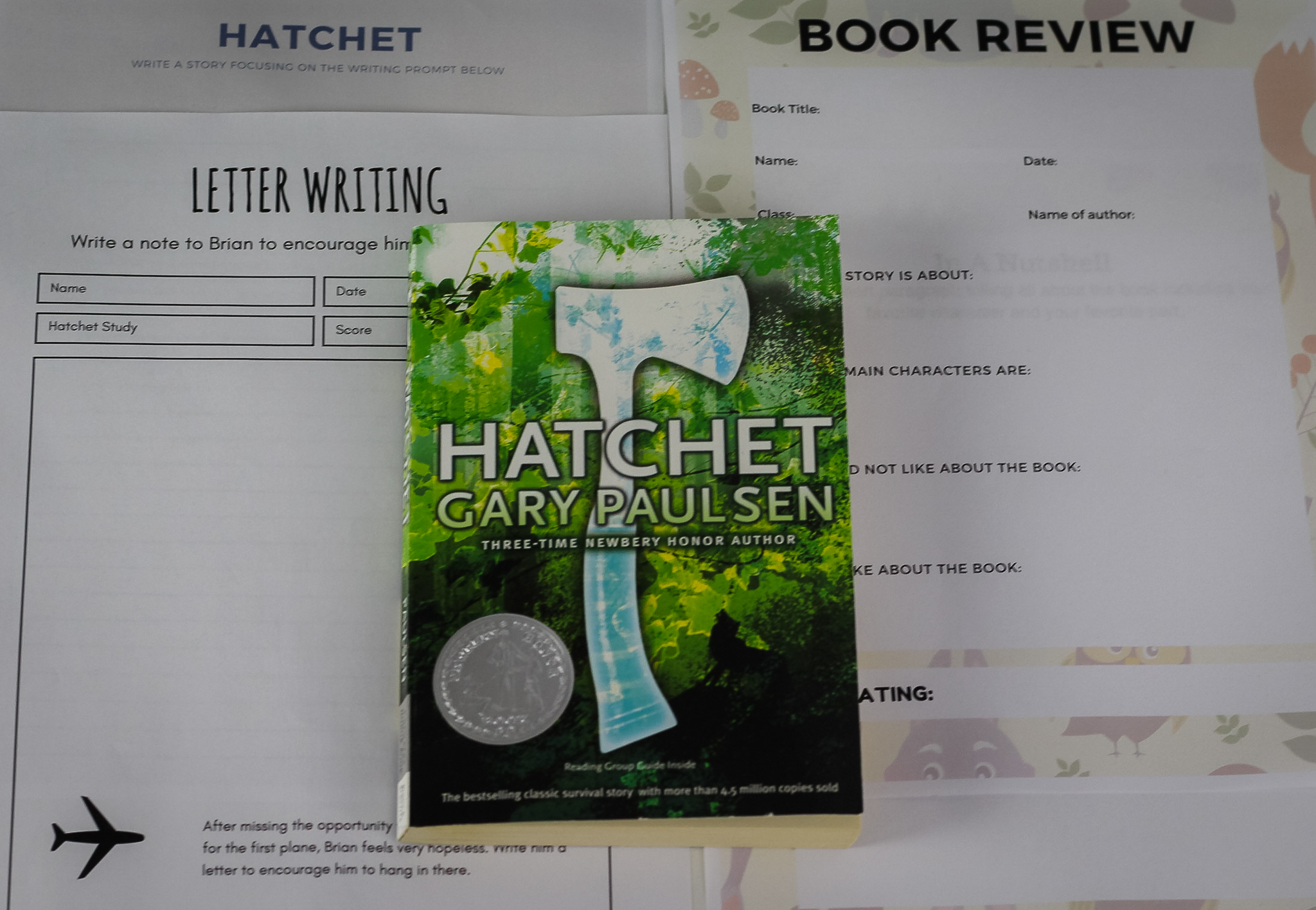 Hatchet Worksheet Series