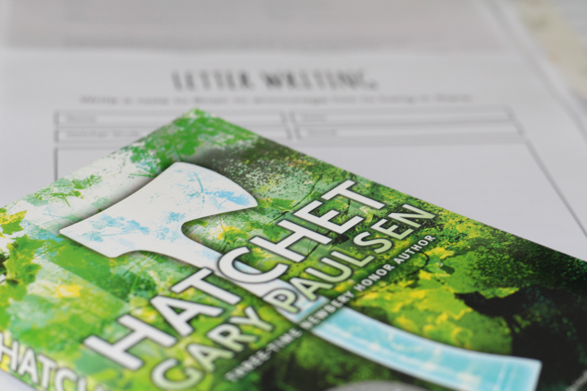 Hatchet Book Review And Worksheets
