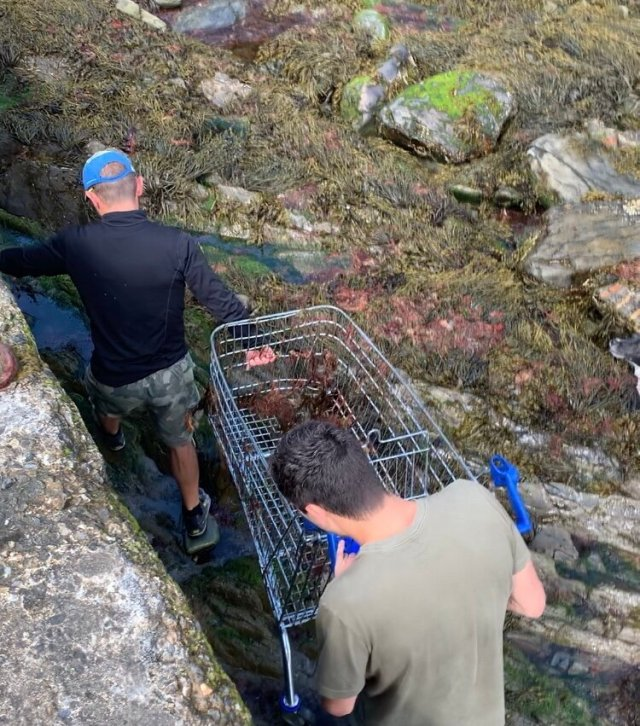 OK even Richard didn't expect this… - Abandoned Trolly: Rescued in Port Soderick