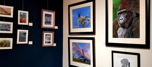 L-R, Small oils by Colette Davies, Male Bluethroat and Male Great Rosefinch by Sue Battery,  Mountain Gorilla by Olive Wassall. Image credit: Hodgson Loom Gallery