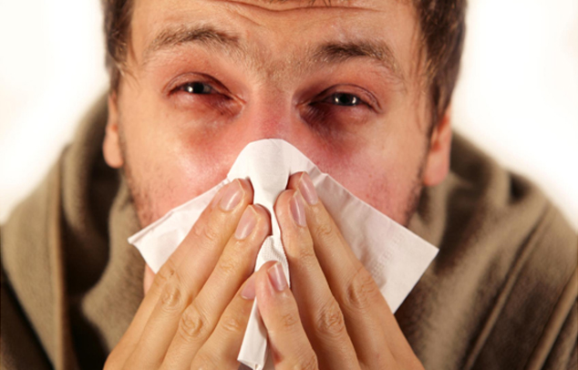Allergie und Asthma