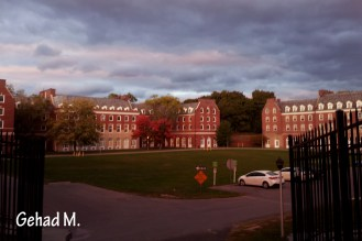 Alumni Quad- University at Albany