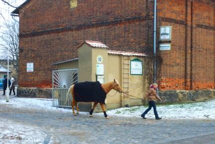 Vorm Pferdehof