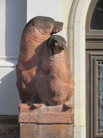 Robben in der Talstraße